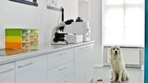 Laboratorium_badania zwierząt
